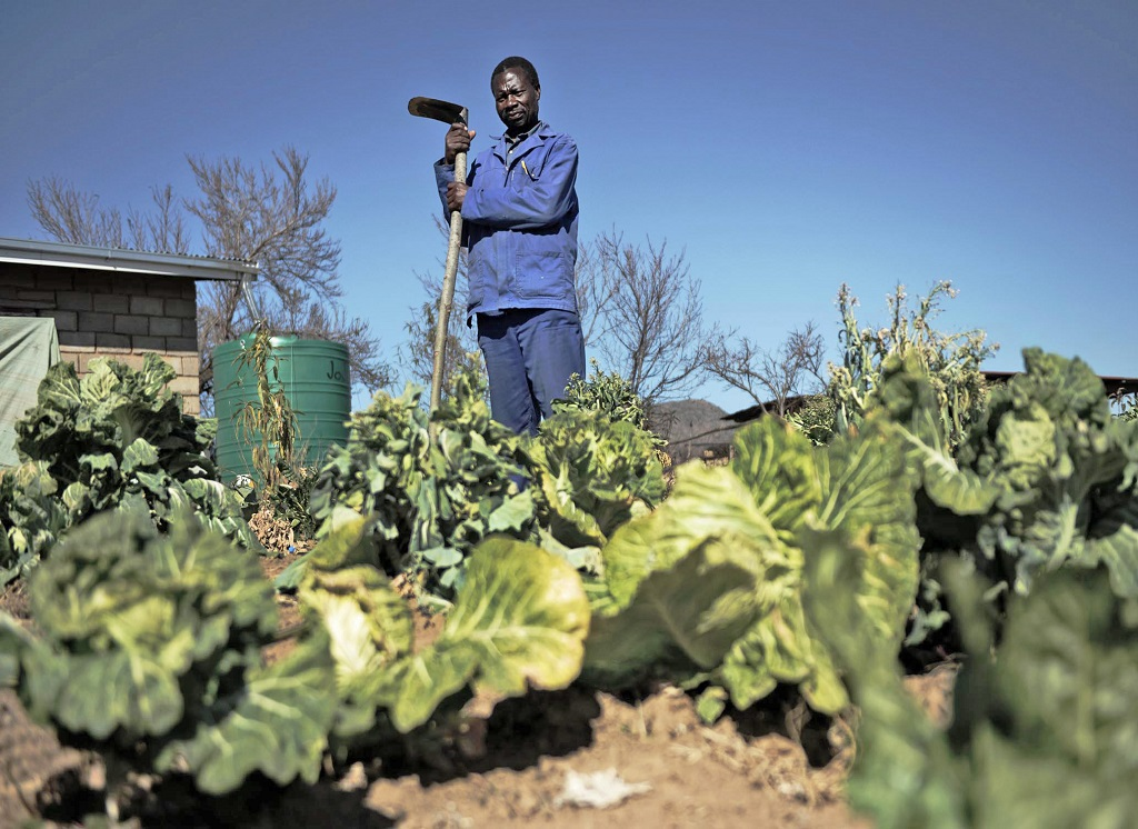 African Farmers Find Solutions For Sustainable Agriculture